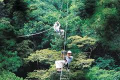 Canopy tour Selvatura